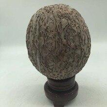 Natural bark stone dinosaur egg landscape mineral specimen personality home office decoration