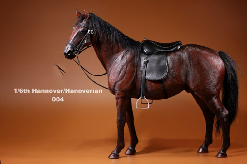 For Collection 1/6 Germany Hannover Hanoverian 002 Horse Model Collection Horse Figure model for 12