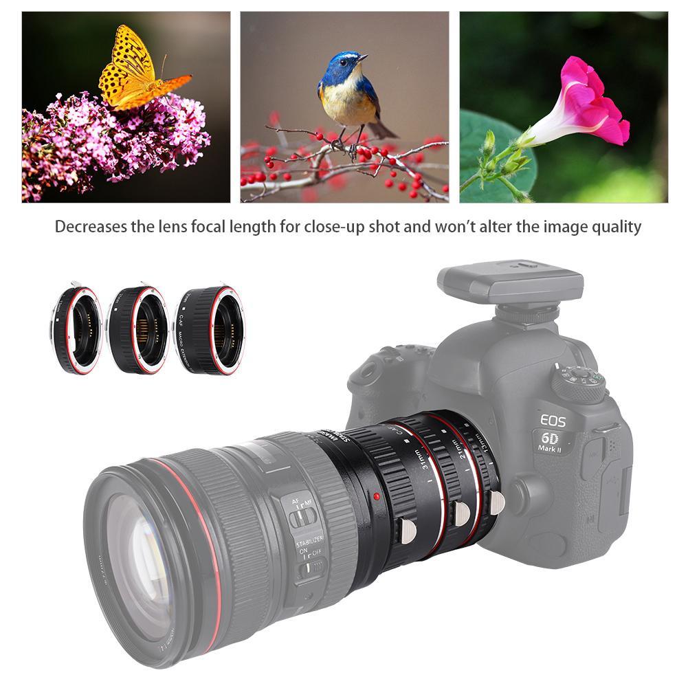 Les anneaux d'adaptateur de lentilles d'extension de Macro de focalisation automatique ont placé pour l'objectif 2019 de Canon EF/EF-S
