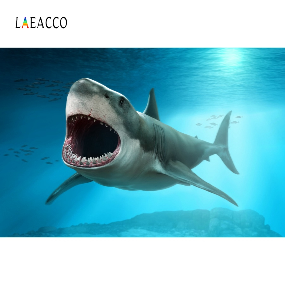 Laeacco Shark Baby Birthday Party Children Backdrop Photography Backgrounds Customized Photographic Backdrops For Photo Studio in Background from Consumer Electronics