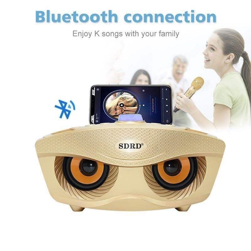 SD 306 Portable famille karaoké système deux Microphones sans fil avec 20w stéréo Bluetooth haut parleur condensateur karaoké Microphone - 2