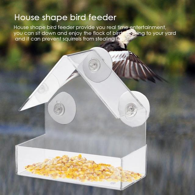 Best window bird feeder 4