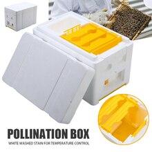 Foam + Plastic Beekeeping Tool Box Auto Honey Beehive Frames Kit Harvest Bee Hive King Pollination