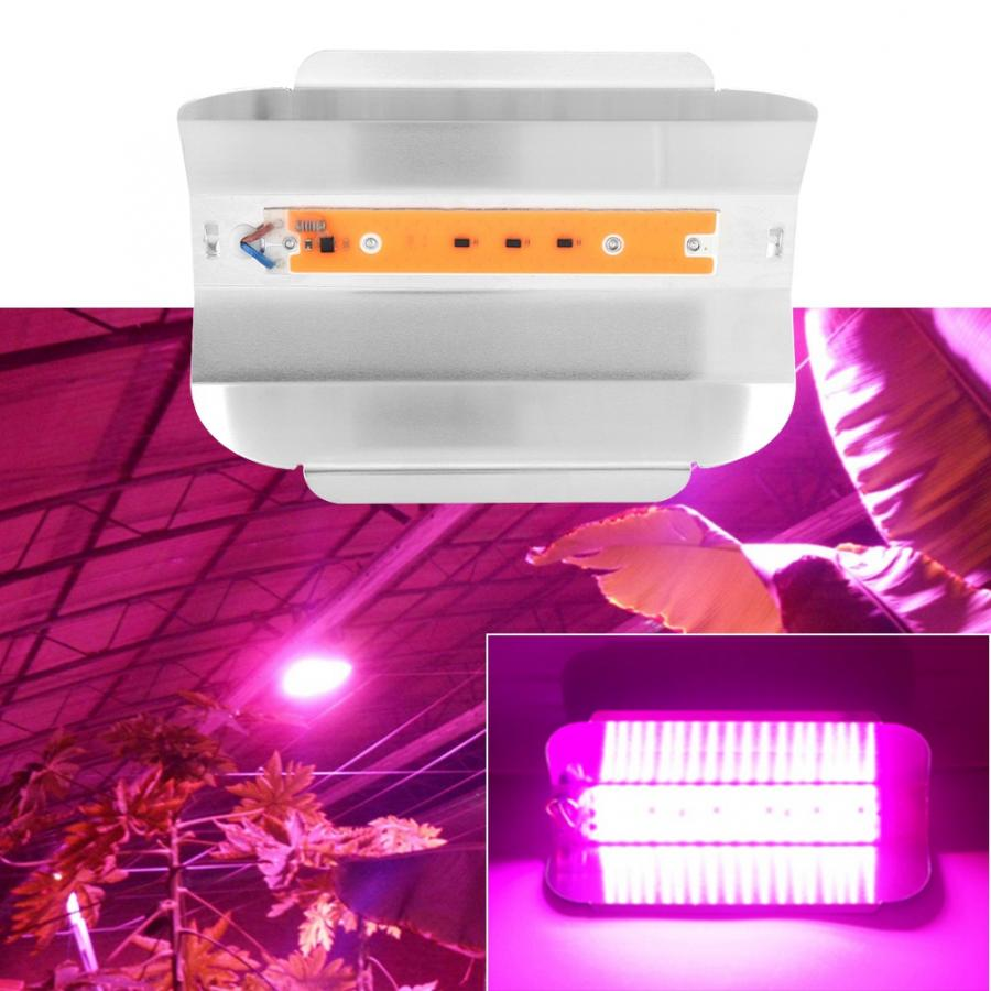 AC 220V 30W 50W 80W Indoor Plants Growing Light COB LED Grow Lamp Full Spectrum Plant Growing Lamp For Greenhouse Professional