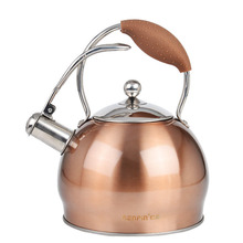 Budget European Stainless Steel Kettle Kettle, Induction Cooker, Gas Pipe Sound 2.5l General