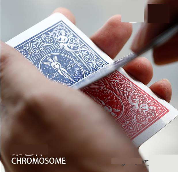 New Chromosome (Gimmick+Online Instruct) - Close Up Magic Tricks,Amazing Illusion Props,Apprentice Illusion Magician,Magic Acces