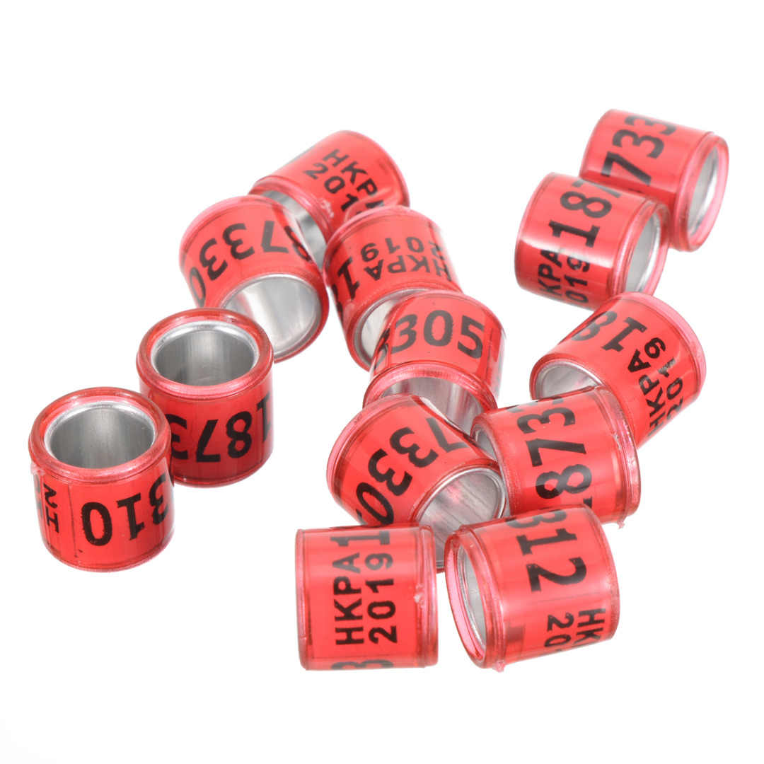 100Pcs 8mm New Product Aluminum Plastic Bird Foot Ring Pigeon Leg Bands For  2019 Racing Pigeon Rings Racing Pigeon Bands