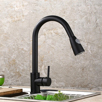 Extendable Kitchen Faucet Mixer Single Lever Mixer Personality Pull Out Basin Bathroom (Black)