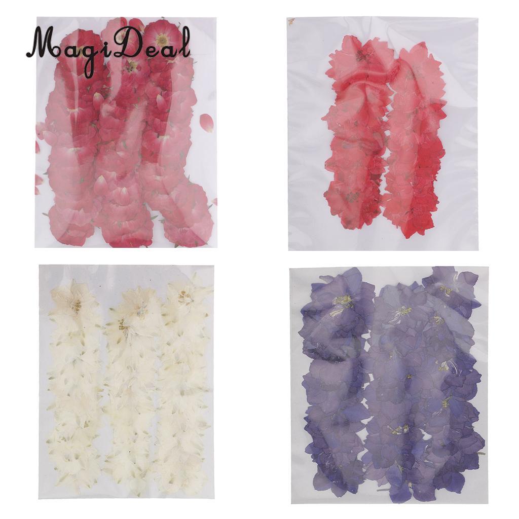 MagiDeal, 50 шт., красивые прессованные цветы розы, сушеные цветы для творчества, скрапбукинга, изготовления открыток, украшение для дома