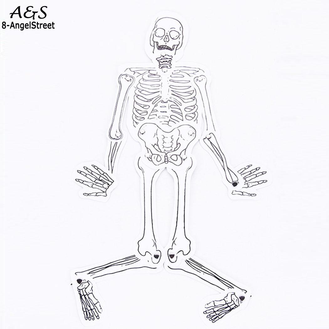 Physical Science Experiment Toy Human Skeleton Making DIY