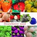 Gran venta de fruta de nutrición orgánica bonsái de fresa rara diversa para el hogar jardín bonsái planta muy deliciosa fruta 100 piezas