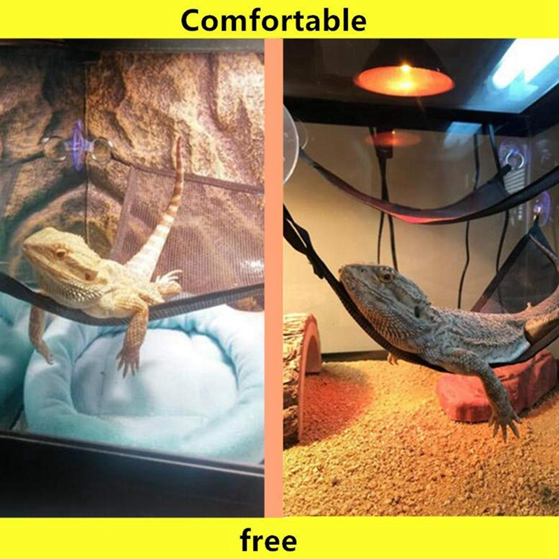 Reptile Hammock Lounger Ladder Accessories Set For Large Small Bearded Dragons Anole Geckos Lizards Or Snakes (19×13