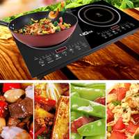 Двухголовочная плита 2200 Вт * 2 с двойной головкой горячая пластина электрическая индукционная плита/варочная плита/кухонная посуда/варочна