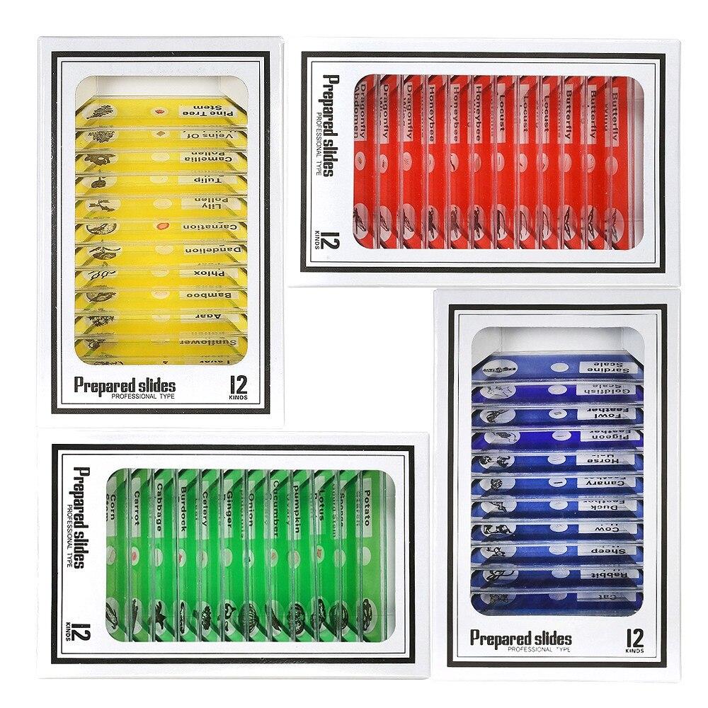 48 pièces enfants en plastique préparé Microscope diapositives d'animaux insectes plantes fleurs échantillons spécimens pour Microscopes stéréo