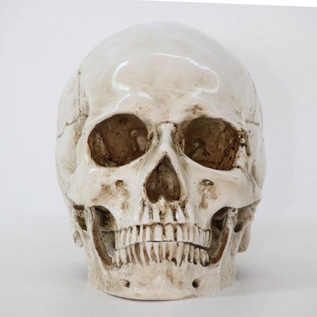 Статуи скульптуры Смола Хэллоуин предмет интерьера ремесло череп размер 1:1 модель жизни Реплика медицинская высокое качество