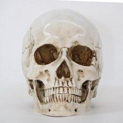 彫像彫刻樹脂ハロウィンホーム装飾装飾クラフト頭蓋骨サイズ 1:1 モデルレプリカ医療高品質