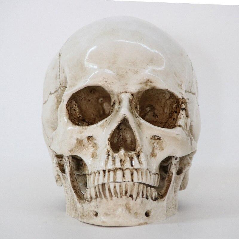 Rzeźby rzeźby żywica halloween do odmu Decor dekoracyjne rzemiosło czaszka rozmiar 1:1 Model życia replika medyczne wysokiej jakości