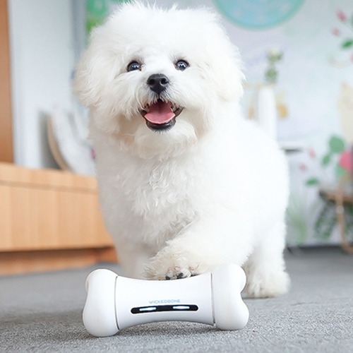 APP Control Smart Pet Toys in Bone Design with Two Wheels Powered by Lithium Battery 1