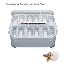 Reptile Breeding Box Professional Hatching Lizard Small Climbing Pet Advanced Incubator with Egg Tray