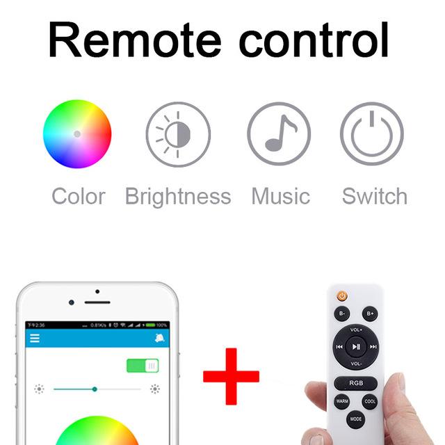 Music Smart LED Ceiling Light
