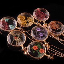 LIEBE ENGEL Women Jewelry Collares Dried Flowers Glass Necklace&Pendant Gold Vintage Long Chain Necklace Summer Fine