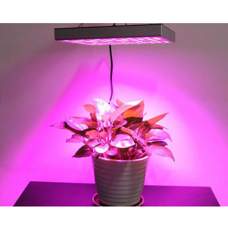 25W/45W Full Spectrum LED Grow Light Plant Growth Panel Lamp for Indoor led grow light Greenhouse tent Hydroponics