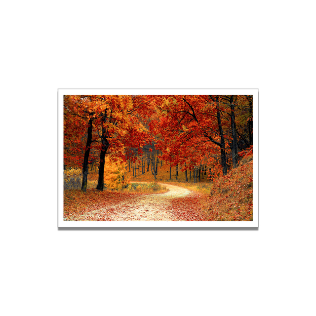 Autumn Forest Canvas Poster