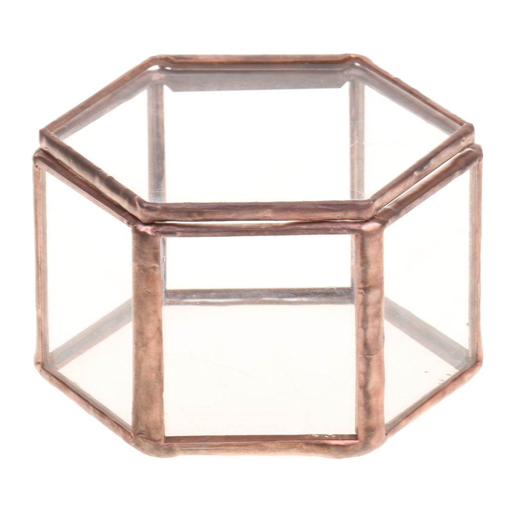 Organize-Holder Glass Jewelry-Box Tabletop Succulent-Plants-Container Clear Geometrical