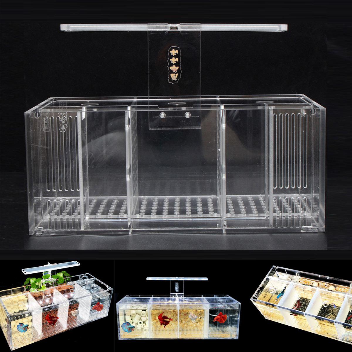 Aquarium Pet Betta Aquarium acrylique Transparent Isolation pompe à eau libre filtres clair seau Aquarium Mini lumière LED de bureau