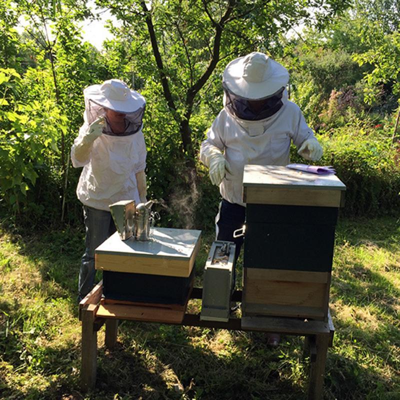 1 corps complet apiculture coton vêtements voile capuche gants chapeau Jaket protection insecte alimentation costume apiculteurs abeille équipement gants