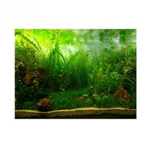 Big-Sale Poster Background Fish-Tank Aquarium Paper-Decoration Water-Grass-Style Adhesive