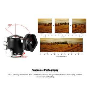 "Image 5 - متعددة الوظائف صغيرة Ballhead الكرة رئيس 360 بانوراما رئيس + الحذاء الساخن قاعدة جبل 1/4 ""المسمار للكاميرا DSLR ضوء الفيديو ميكروفون"