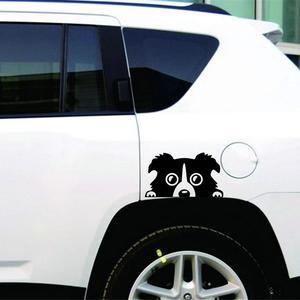 Image 4 - 1 шт., автомобильная Светоотражающая наклейка для собак, 14 х8 см