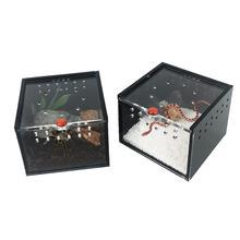 Small Pet Terrarium Acrylic Transparent Panorama Spider Reptile Culture Storage Box Ventilation Observation Footprint