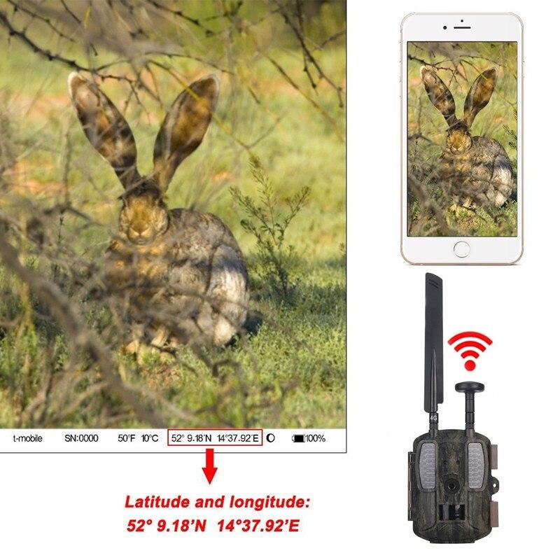צבי Wildcamera עם GPS 4G FDD-LTE Thermo חזון מצלמה - ציד