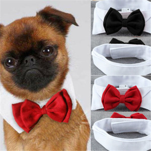Fashion Adjustable Pet Bows Puppy Kitten Dogs Cat Tie-Collar Necktie Bowknot Clothes For Pets Dog Cat New Strap Styling New 2019(China)