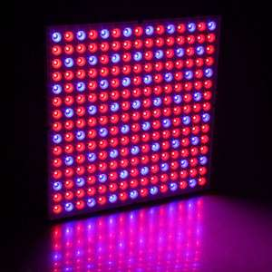 Led-Light Reflector Flower-Plants-Lamp Grow Indoor Tent-Box Greenhouse Full-Spectrum