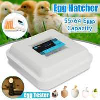 50W 55/64 Position Eggs Automatic Incubator LED Egg Incubator Poultry Hatcher Fully Automatic Home Hatching Machine12V/110 240V