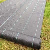 Weed Barrier Fabric Agriculture Greenhouse Garden Weed Control Orchard Landscape Plant Weeding Ground Cloth Cover PE Braiding