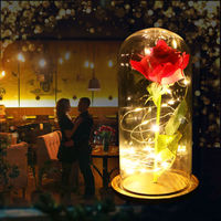 Enchanted Rose Beauty And The Beast Preserved Flower In Glass Immortal Gift USA