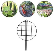 Outdoor Garden Plant Support Potted Vine Holder Ring Plant Support Strong Steel Wire With Plastic Coating Plants Support Rings