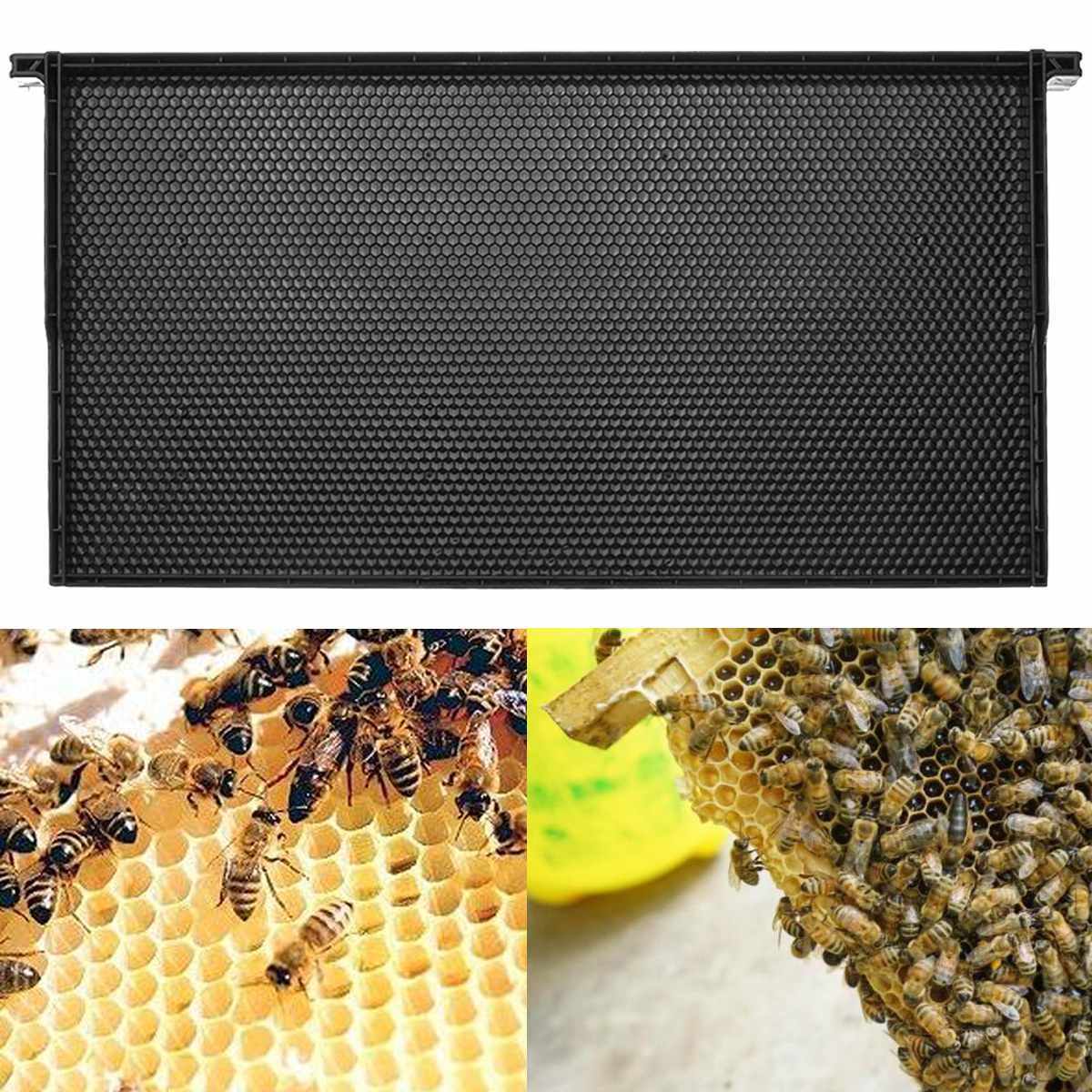 US $12 68 17% OFF|Comb Foundation Beekeeping Supplies Plastic Black Comb  Wax Foundation Comb Beehive Frames Honey Bee Beekeeping Hive Tools-in
