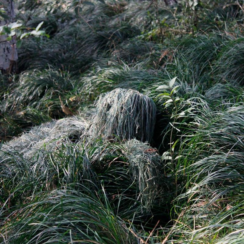 Image 5 - 3D Leaf Camouflage Ghillie Suit Outdoor Hunting Birding Watching Photographing Clothing Breathable Jungle Clothes for Hunter-in Hunting Ghillie Suits from Sports & Entertainment