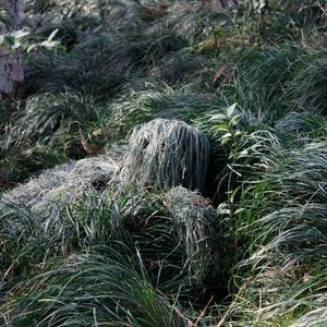 Image 5 - Ghillie mimetico foglia 3D Suit caccia allaperto Birding guardare fotografia abbigliamento traspirante abbigliamento giungla per cacciatore