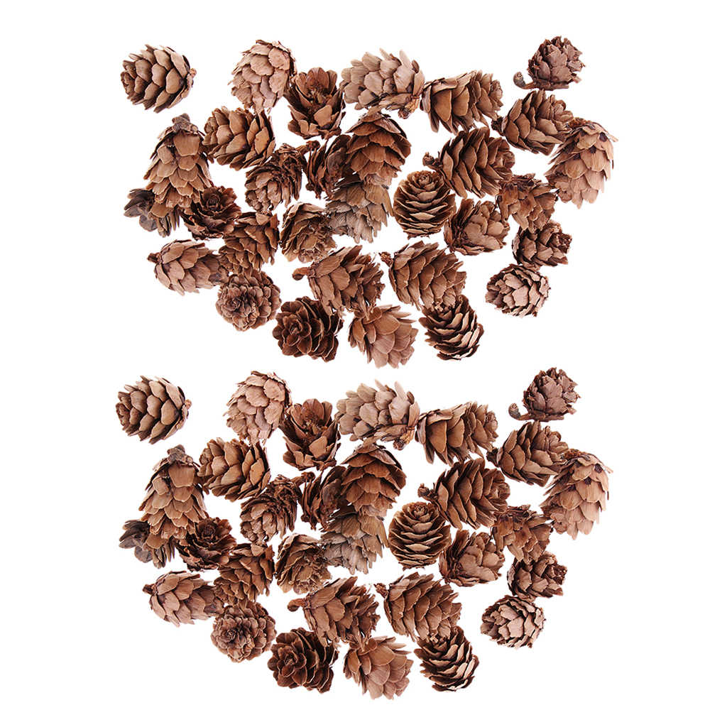 30pcs Cute Natural Dried Pine Cones In Bulk Dried Flowers for Xmas Decor