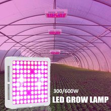 Full Spectrum 100 LEDS Plant Grow Led Light for Greenhouses Seeds Flower Veg Hydroponic Indoor Plant Flowering Growth 600W(China)
