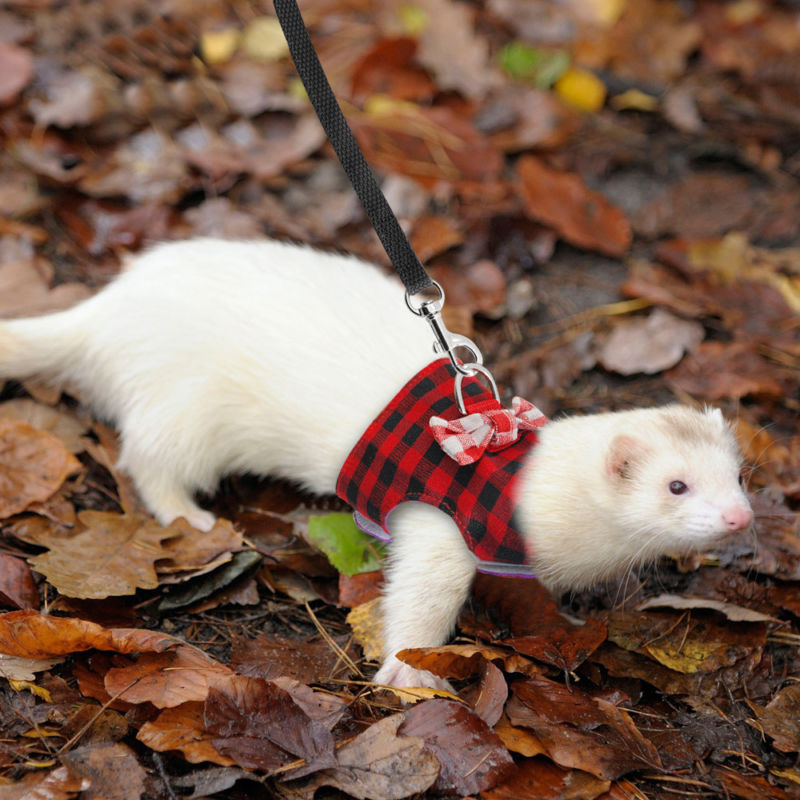 XS/S M Soft Canvas Breathable Harness Leash Lead For Hamster Rabbit Guinea Pig Rat Ferret Cat Pink/Red/BluePet Clothes +Leash