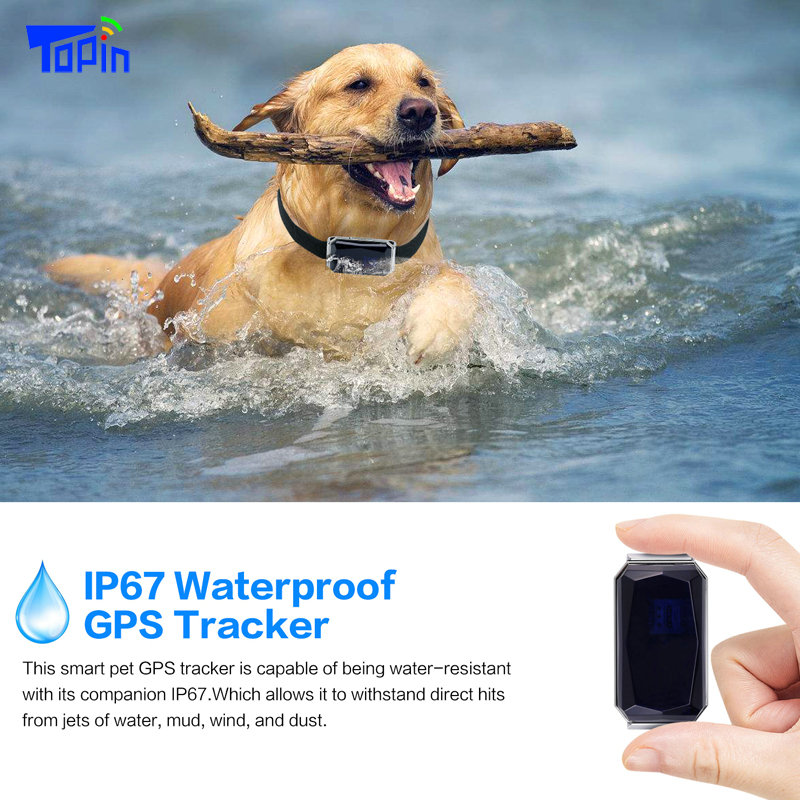 New Arrival IP67 Waterproof Pet Collar GSM AGPS Wifi LBS Mini Light GPS Tracker for Pets Dogs Cats Cattle Sheep Tracking Locator 4