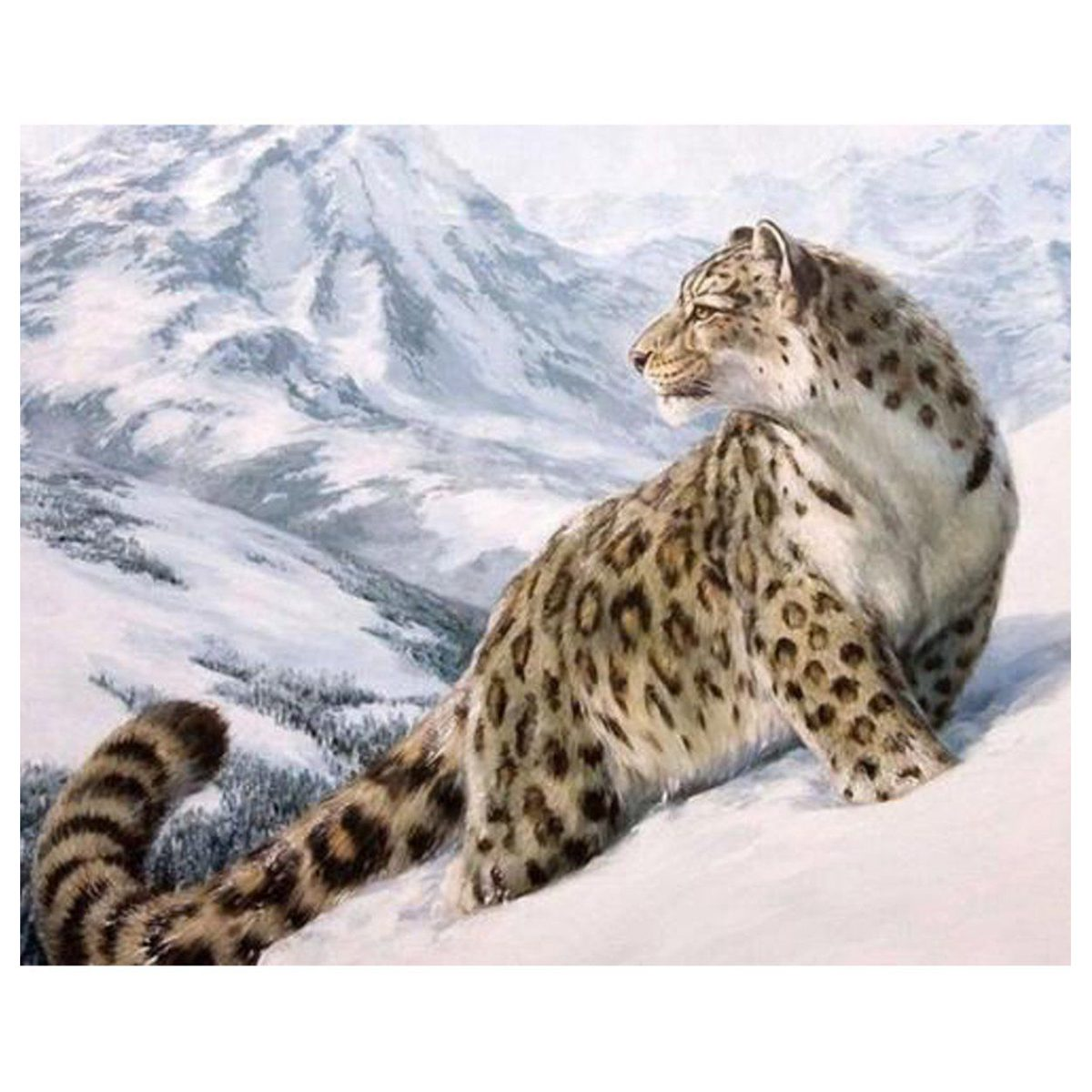 PPYY NEW -Paint By Number Kit DIY Oil Painting Cloth Digital Home Decor, Snow Leopard