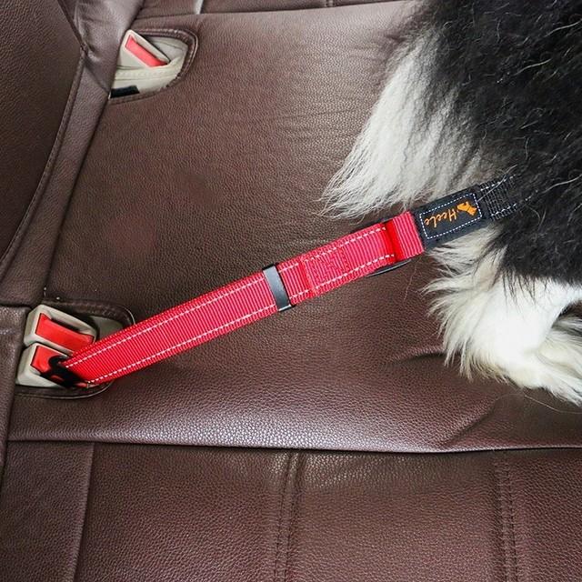 Pet Seat Belt